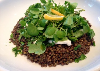 Watercress and puy lentils